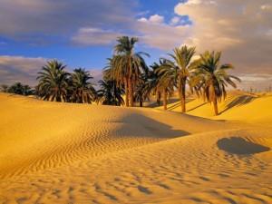 photo sud tunisie