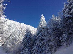 montagne-france-hiver-massif-central