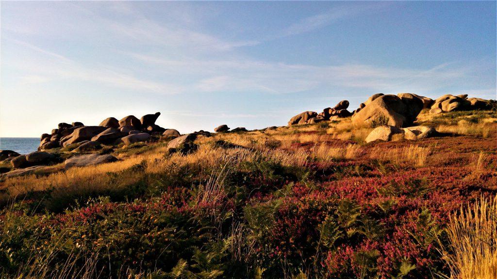 Paysage breton sur le sentier des douaniers